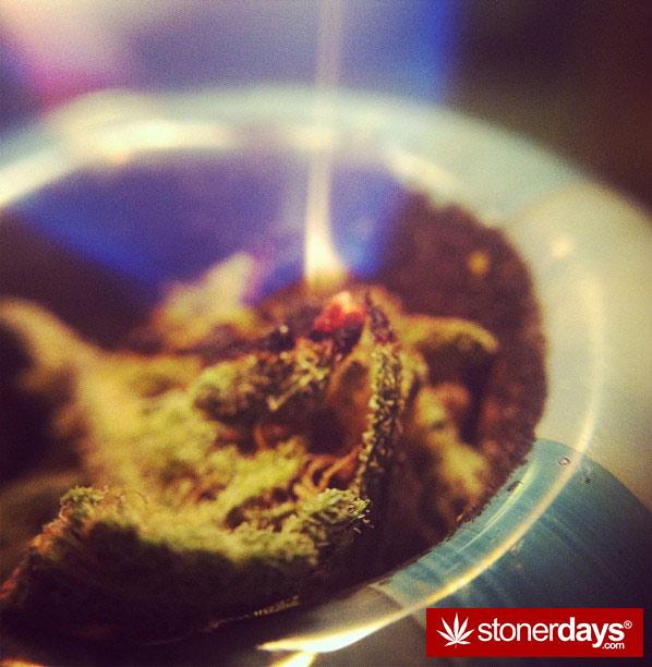 blazed-420-babe-stoned-__misstetra__-(55)