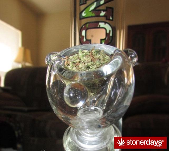 sexy-stoner-marijuana-pictures (346)