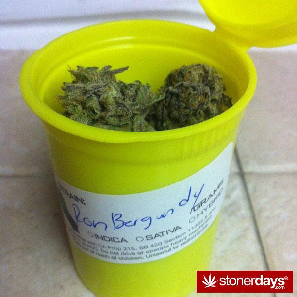 stoner-blazed-stoned-_missmaryjanes-(3)