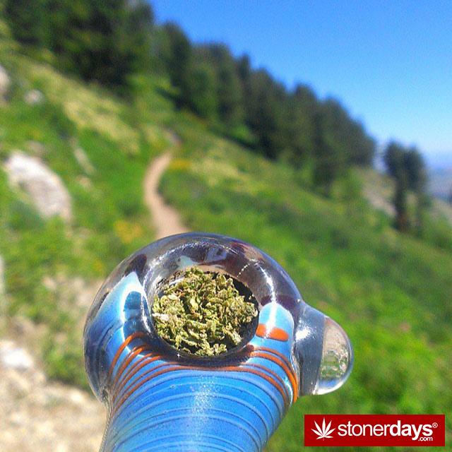 stoner-puffdankdaily-(3)