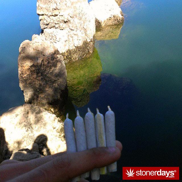 stoner-puffdankdaily-(45)