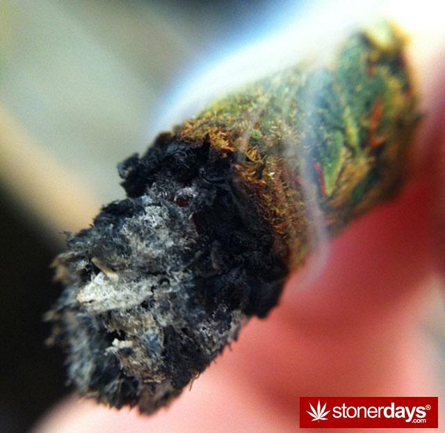 stoner-weed-kush-marijuana-comoxstone-(68)