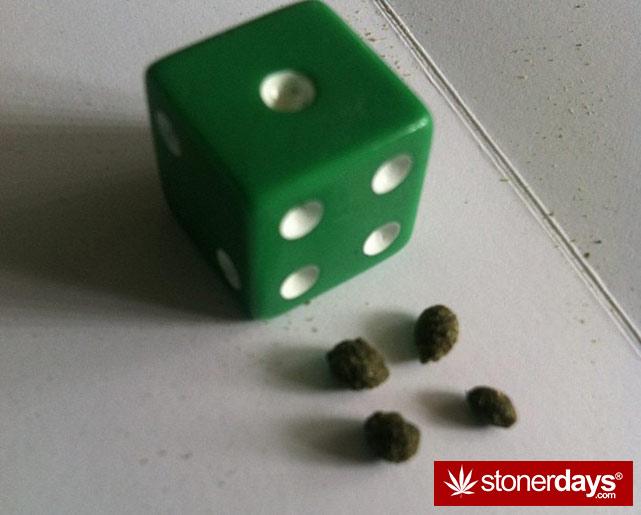 stoners-pics-of-pot-marijuana-pictures (172)