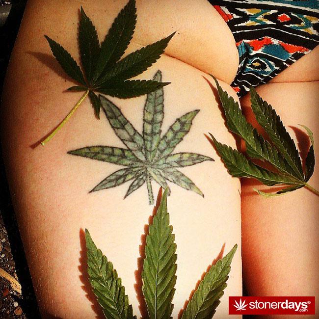 420-babe-stoner--blazed-instapounds23-(8)