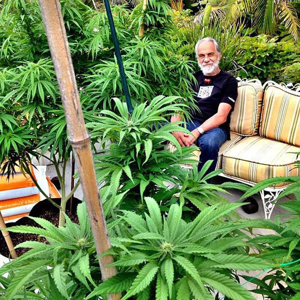 TommyChong_garden