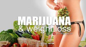 marijuana-weight-loss