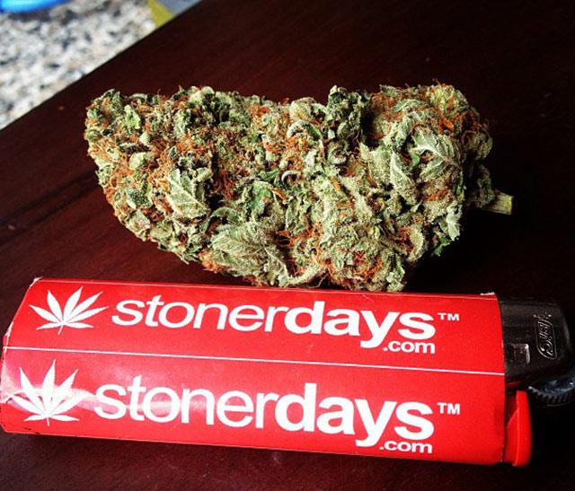 stoner-kimber_fox-(3)