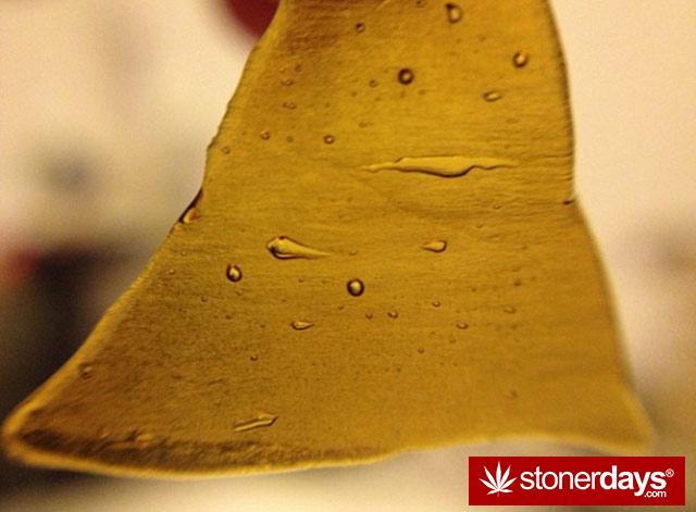 stoner-blazed-420--babe-Krisduhdabs-(8)
