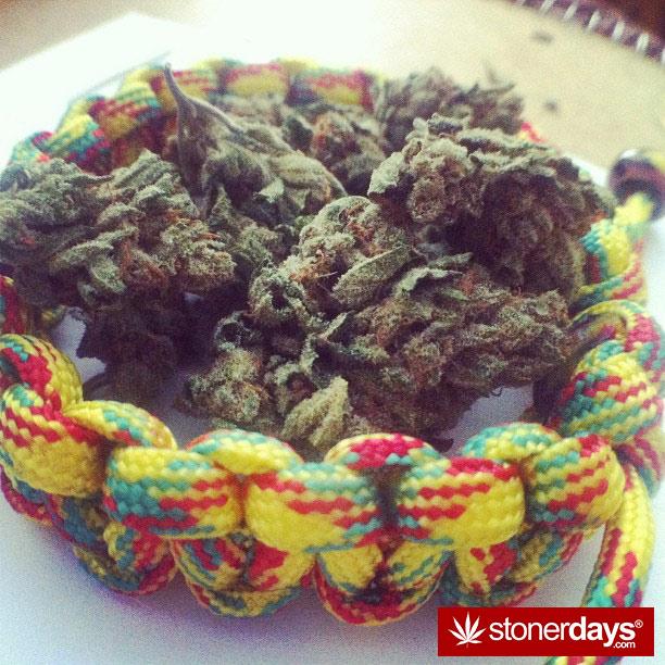 stoner-blazed-stoned-_missmaryjanes-(5)
