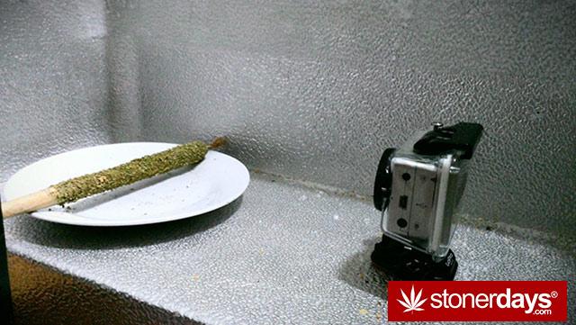 420-marijanua-stoner-wee (16)