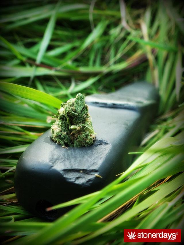 420-marijanua-stoner-wee (27)