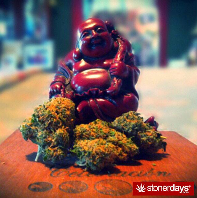 420-marijanua-stoner-wee (56)