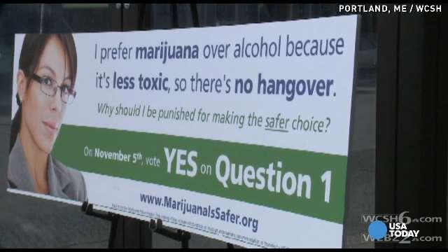marijuana adds stonerdays
