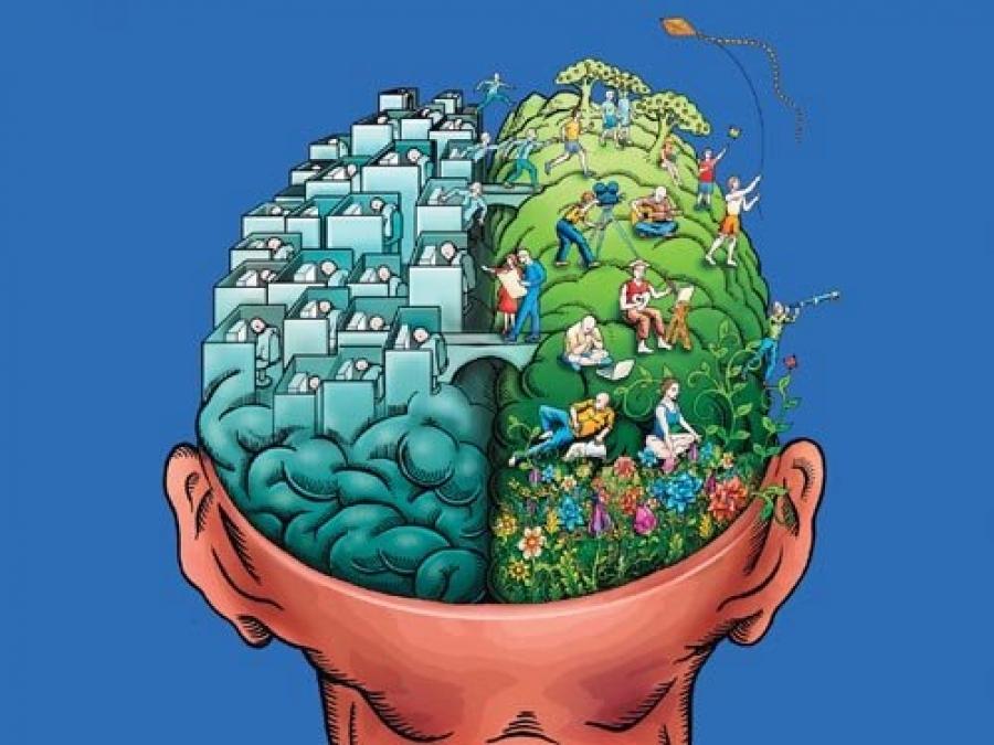 marijuana and the brain stonerdays