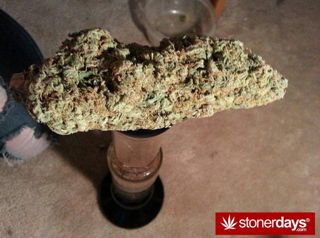 stoner-babes-marijuana-munchies-baakedblondiie-(21)