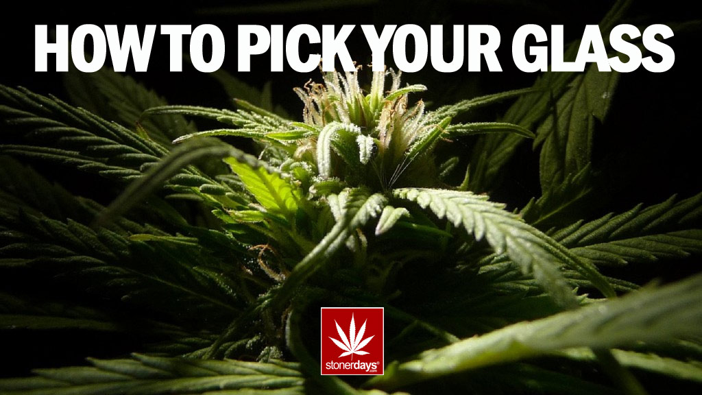 HOW TO PICK YOUR GLASS STONERS STONERDAYS
