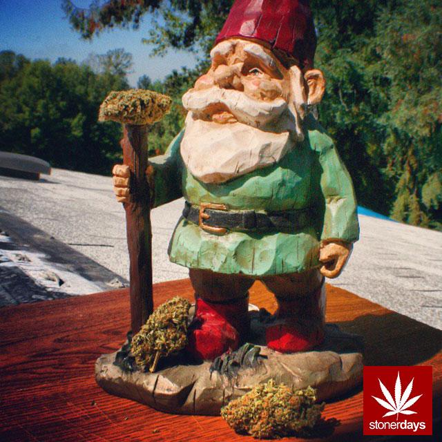 StonerDays-gnome-shesmokesjoints