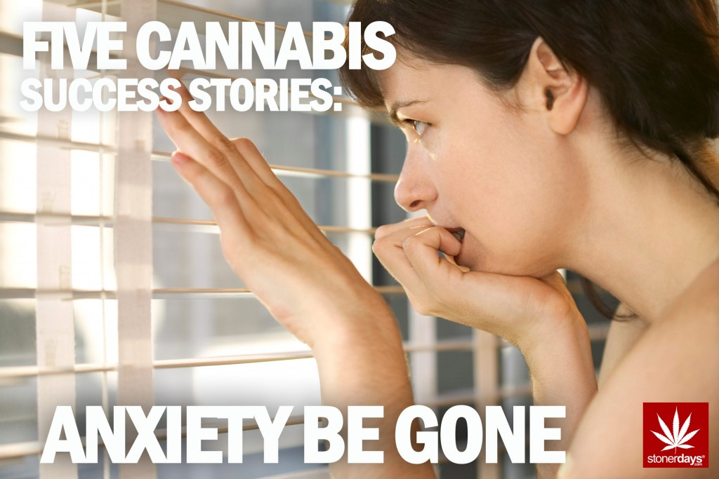 CANNABIS STORIES STONERDAYS
