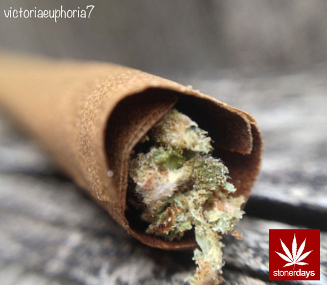 stoner-marijuana-victoriaeuphoria7-(11)