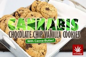 CHOCOLATE-CHIP-VANILLA