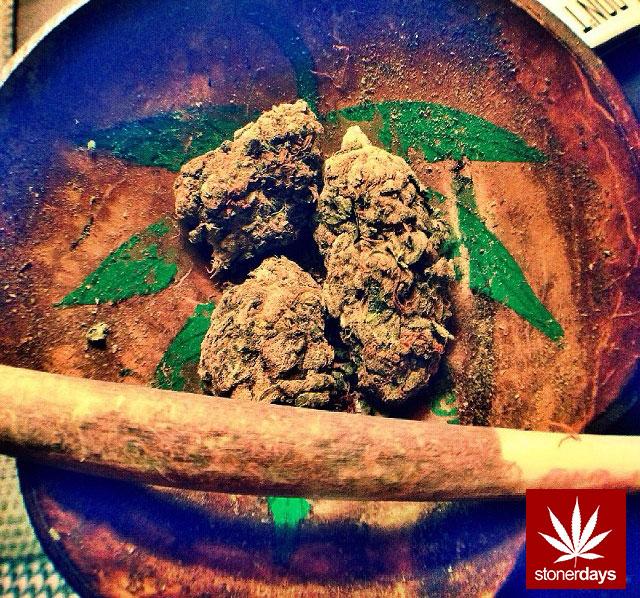 Marijuana-sexy-stoner-stonerdays-dope_girls_fun-(2)