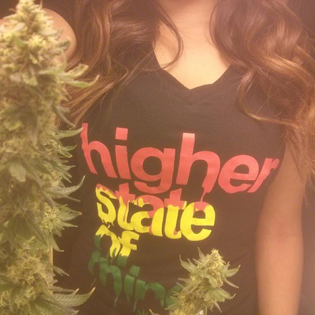 Stoner-higher-state-of-mind (71)