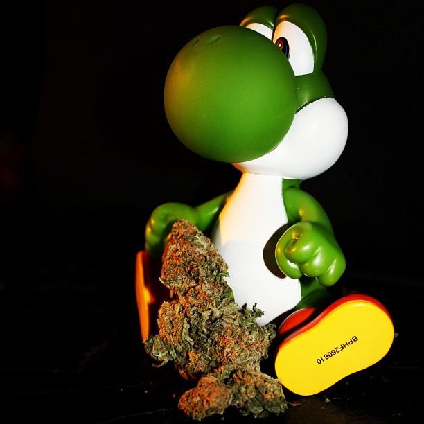 StonerDays-Stay-Blazed-Marijuana-420 (15)