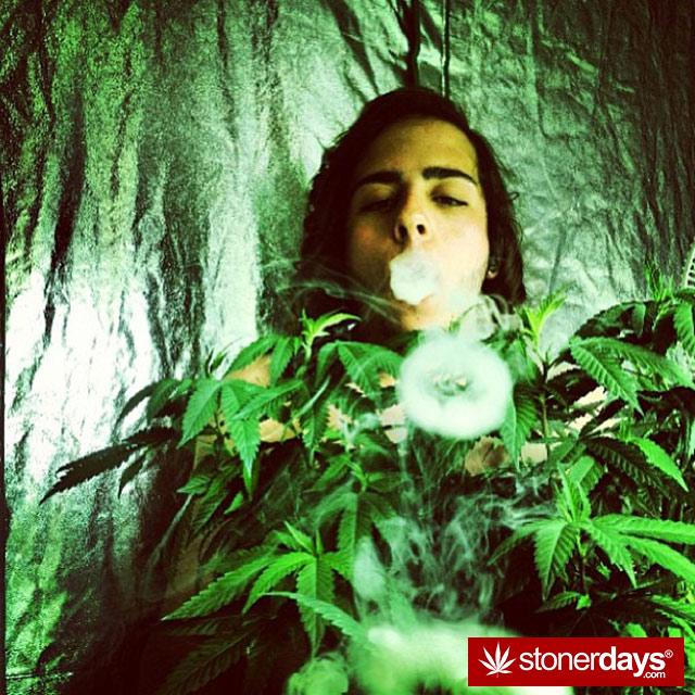stoner-thisisnateperry-(36)