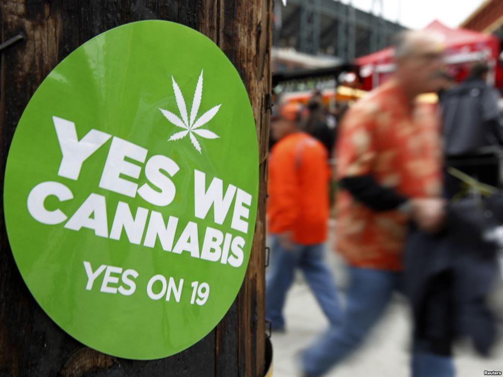 stoner legalize marijuana stonerdays