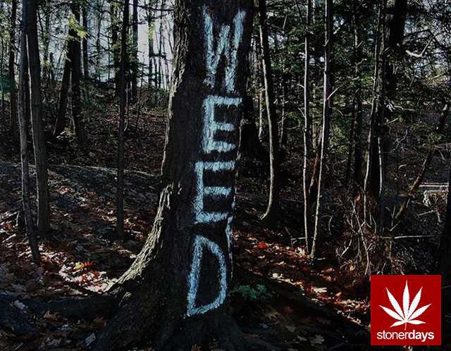 Stoner-Marijuana-StonerDays-Weed-(27)