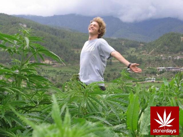 marijuana-stonerdays-420-sexy-pot-(69)