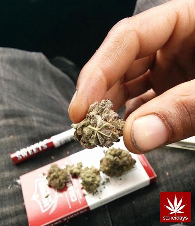 marijuana-stonerdays-420-sexy-pot-(78)