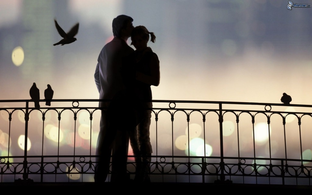 [pictures.4ever.eu] silhouette of couple, kiss, hug, pigeons, fence 158844
