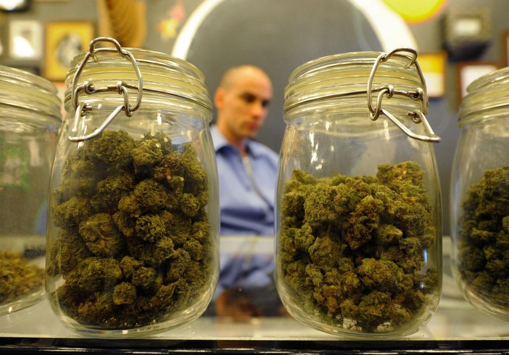 Decriminalizes Cannabis 1