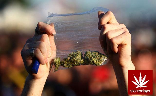 Stoner-Marijuana-StonerDays-Weed-(135)