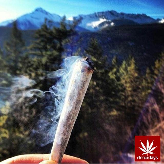 Stoner-Marijuana-StonerDays-Weed-(147)