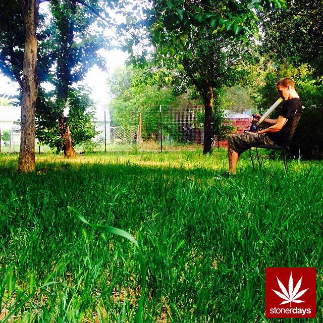 marijuana stonerdays stayblazed mls higher baked smoke tricks (25)