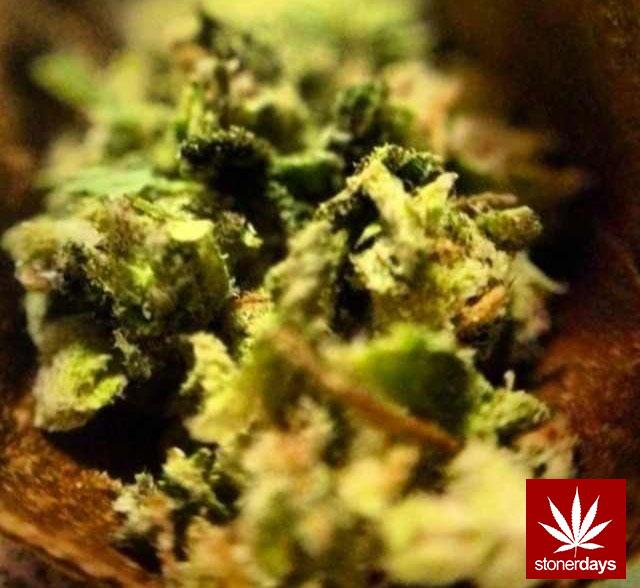 marijuana stonerdays stayblazed mls higher baked smoke tricks (31)