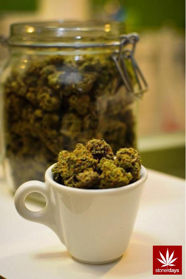 stonerdays-marijuana-baked-joints-blunts-sexy-(151)