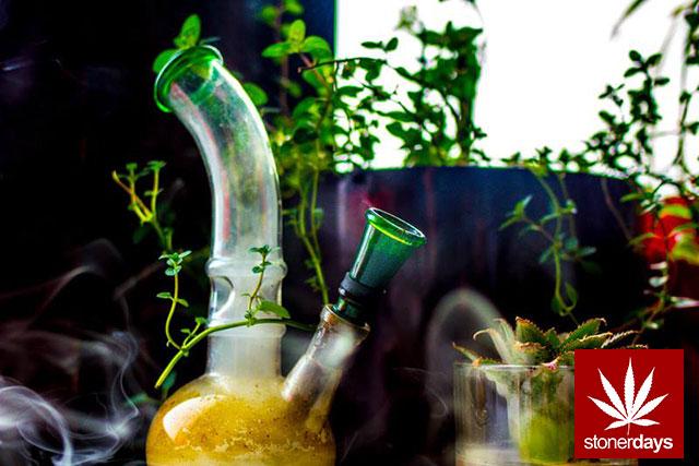 stonerdays-marijuana-baked-joints-blunts-sexy-(175)