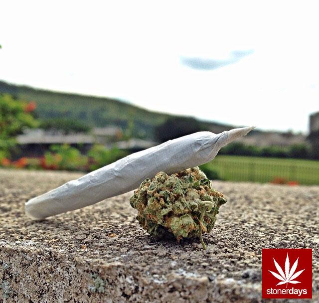 stonerdays-marijuana-baked-joints-blunts-sexy-(38)