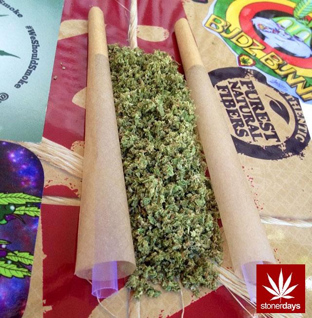 stonerdays-marijuana-baked-joints-blunts-sexy-(6)