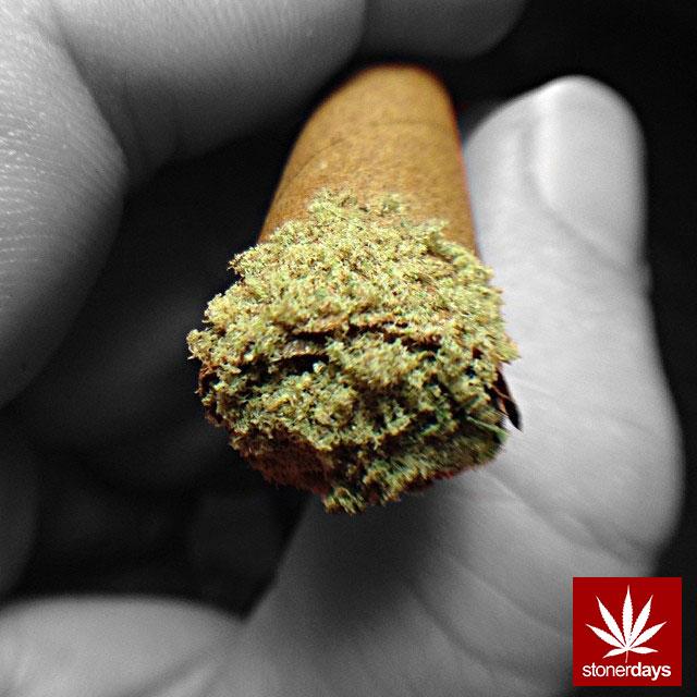 stonerdays-marijuana-baked-joints-blunts-sexy-(61)