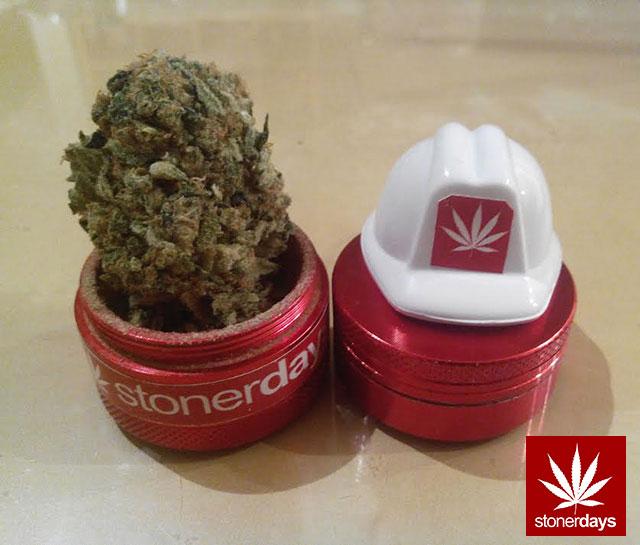 stonerdays-marijuana-baked-joints-blunts-sexy-(94)