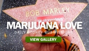 MARIJUANA-LOVE STONERDAYS
