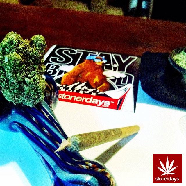 Stay Blazed StonerDays Marijuana Weed (243)