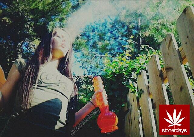 Stay Blazed StonerDays Marijuana Weed (248)