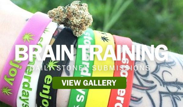 brain-training stonerdays