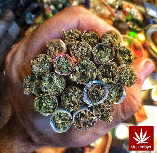 stoners marijuana pot weed stoned sexy stoner (102)