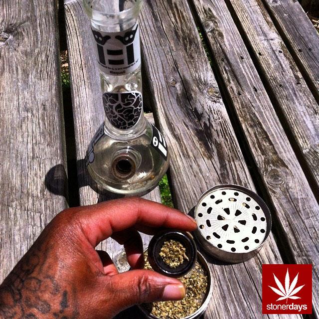 stoners marijuana pot weed stoned sexy stoner (126)